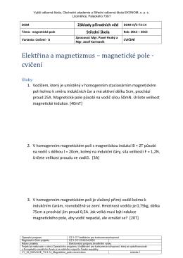 Elektřina a magnetizmus – magnetické pole