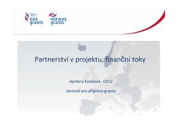 Partnerství v projektu, finanční tokyPDF
