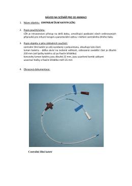 NÁVOD NA SCÉNÁŘ PRO 3D ANIMACI 1. Název objektu