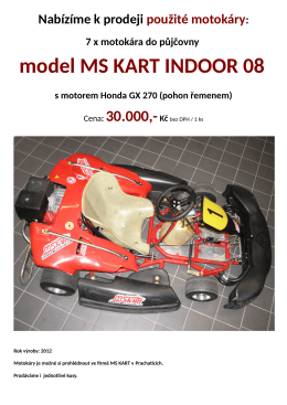 model MS KART INDOOR 08