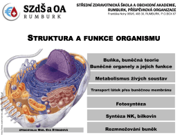 3_struktura a funkce organismu_new - zizi.com