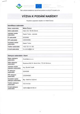 ldentifi kace zadavatele Zástupce zadavatele v řízení