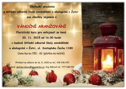 vánoční aranžování - Střední škola zemědělská a ekologická v Žatci