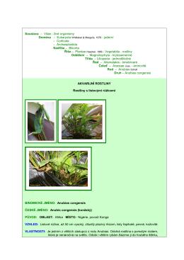 Soustava – Vitae - živé organismy Doména – Eukaryota – Corticata