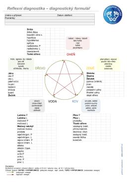 pdf verze zde