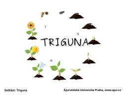 Setkání: Triguna Ájurvédská Univerzita Praha