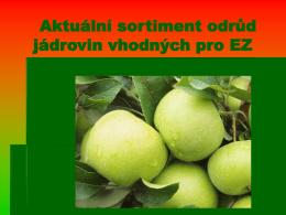 Aktuální sortiment odrůd jádrovin vhodných pro EZ