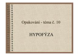 opakování HYPOFÝZA