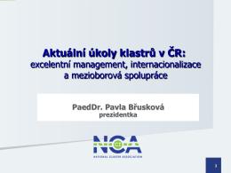 Aktuální úkoly klastrů v ČR: