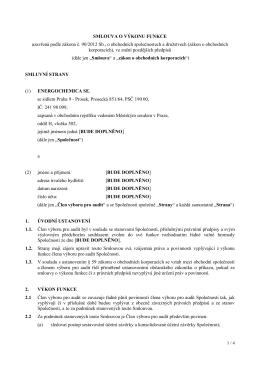 Projednání a schválení smluv o výkonu funkce