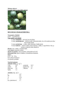 Meloun cukrový