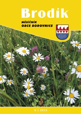Červen - Borovnice