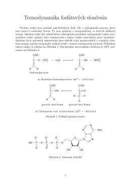 Termodynamika fosfátových sloučenin