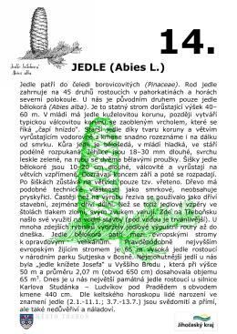 Tabule - JEDLE z
