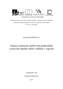 Analýza - vyzkumnecentrum.eu