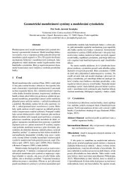 Geometrické membránové systémy a modelování cytoskeletu