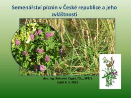 Semenářství pícnin v ČR a jeho zvláštnosti