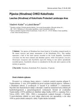 PDF 178.1 KB