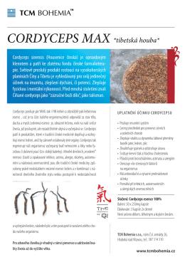 Cordyceps - TCM BOHEMIA shop