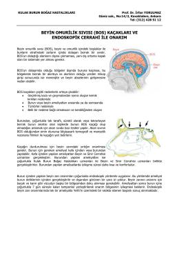 Beyin-omurilik sıvısı kaçaklarında endoskopik sinüs cerrahisi