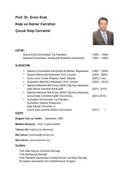 Ersin Erek CV - Prof. Dr. Ersin EREK