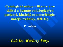 Lab In, Karlovy Vary.