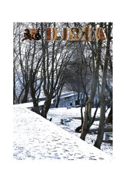 Bilten 145 - Općina Ilidža