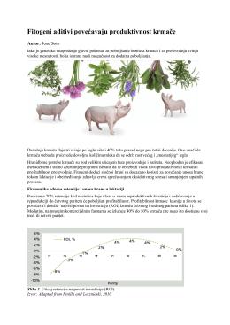 Veća produktivnost krmače primenom fitogenih aditiva