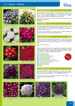 katalog 2010_obalka
