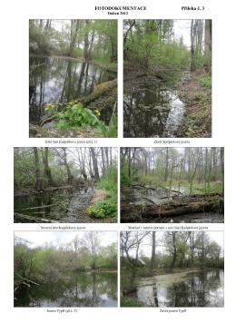 Botanický průzkum fotodokumentace