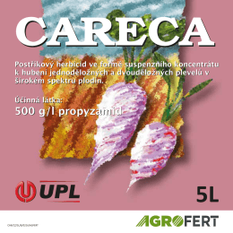 CARECA 5L Back