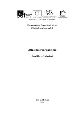 Atlas mikroorganismů - Říhová-Ambrožová J. - EnviMod