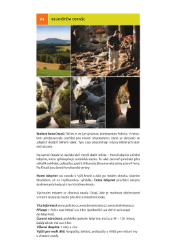 Detail v pdf