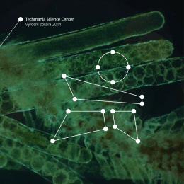 Techmania Science Center Výroční zpráva 2014
