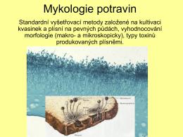 Mykologie potravin