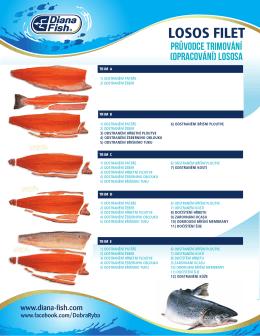 Průvodce trimování lososa