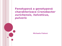 Fenotypová a genotypová charakterizace Cronobacter zurichensis