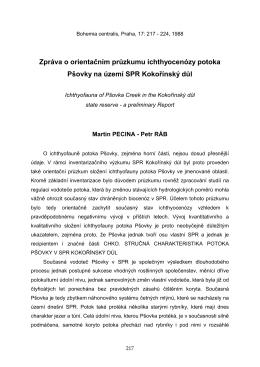 PDF 126.9 KB