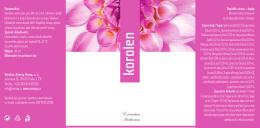 korolen - Energy