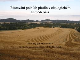 Moudrý - Pěstování polních plodin v ekologickém zemědělství