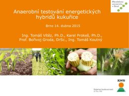 Anaerobní testování energetických hybridů kukuřice