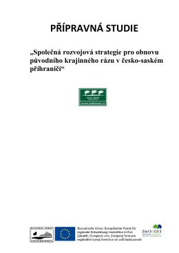 Přípravná studie Společná rozvojová strategie pro obnovu