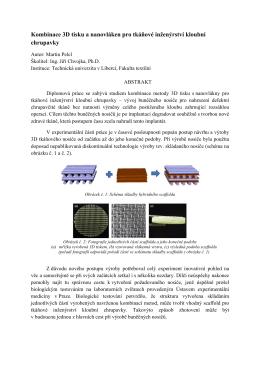 Kombinace 3D tisku a nanovláken pro tkáňové inženýrství kloubní