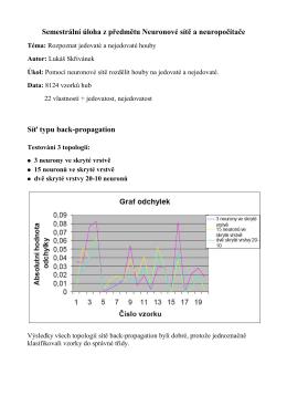 Referát zpracování dat + sítí v pdf