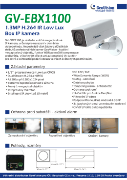 GV-EBX1100