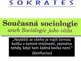 sociální role