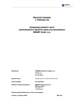 Znalecký posudek - Cyrrus Corporate Finance