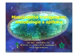 Mimojaderná transgenoze: metodologie a aplikace Mimojaderná
