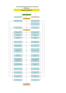 Schemat organizacyjny Personelu Konsultanta INŻYNIER