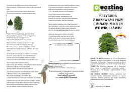 quest drzewa - Gimnazjum 29 we Wrocławiu